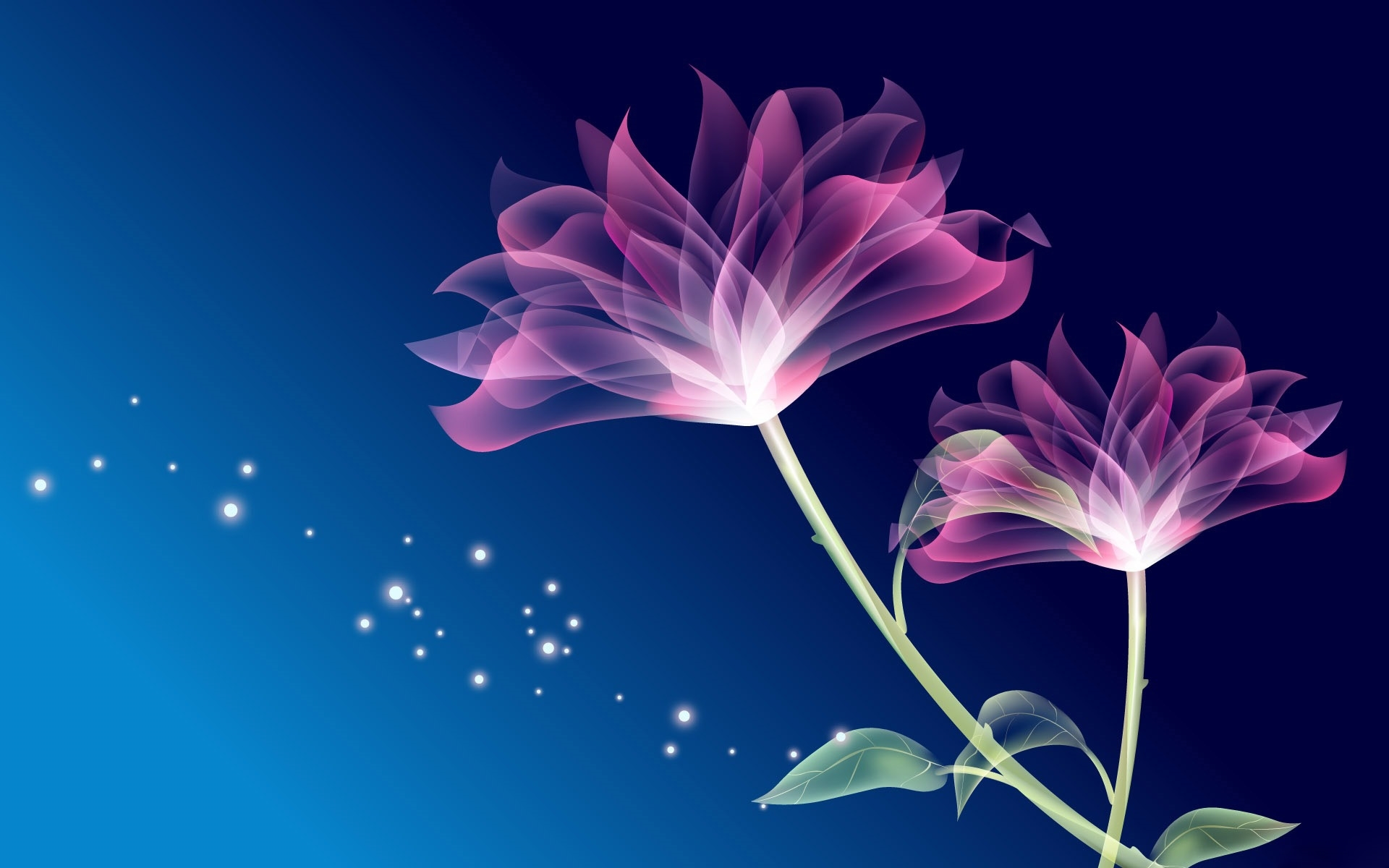 abstract flower full hd
