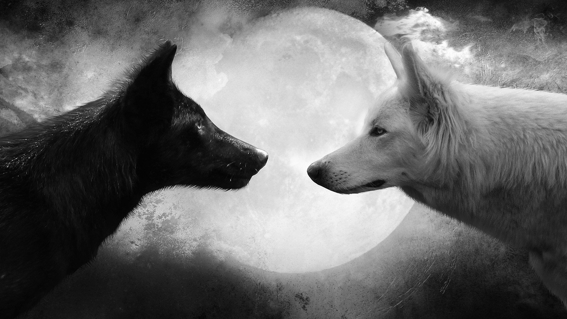 wolf deskto
