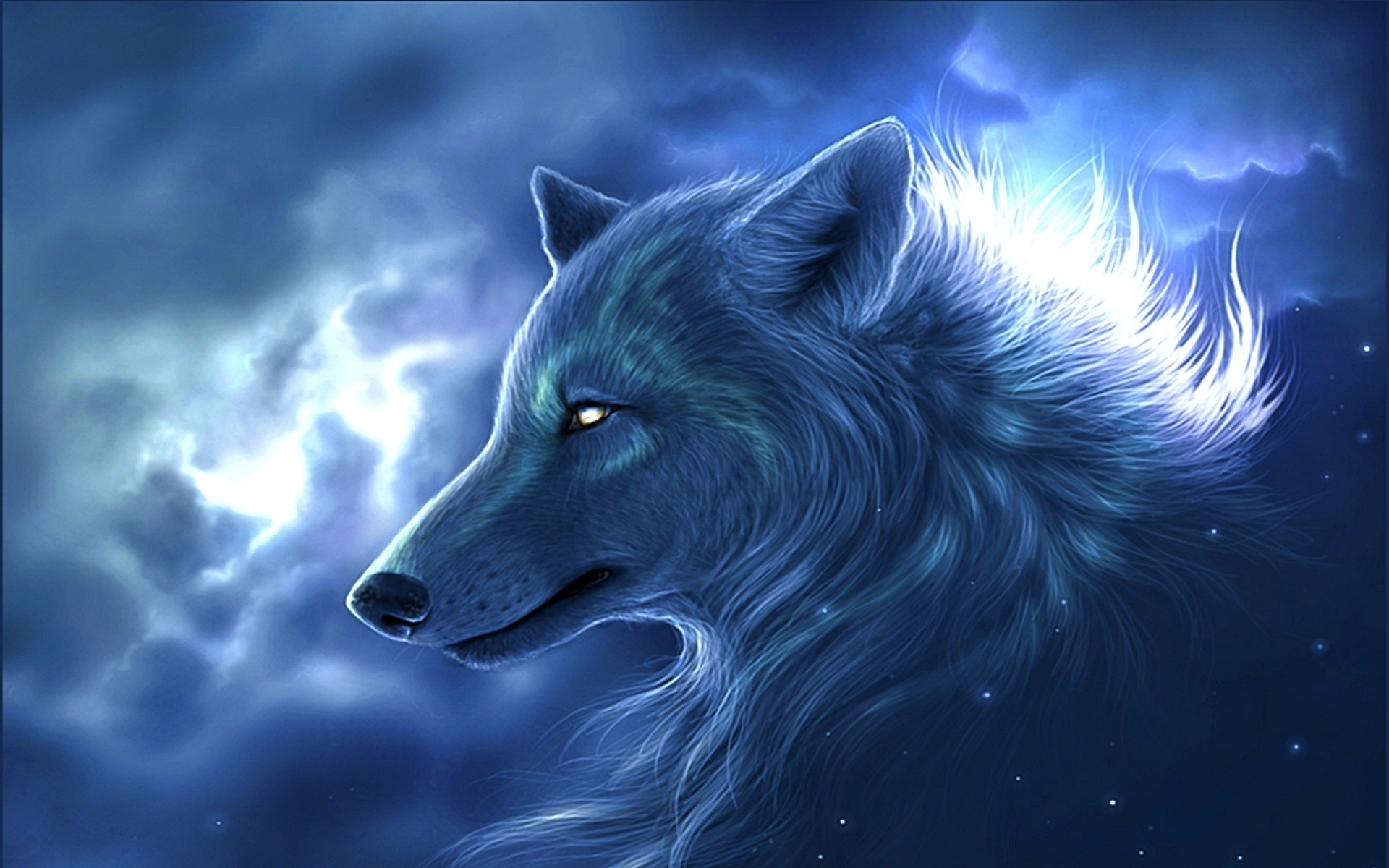 wolf download