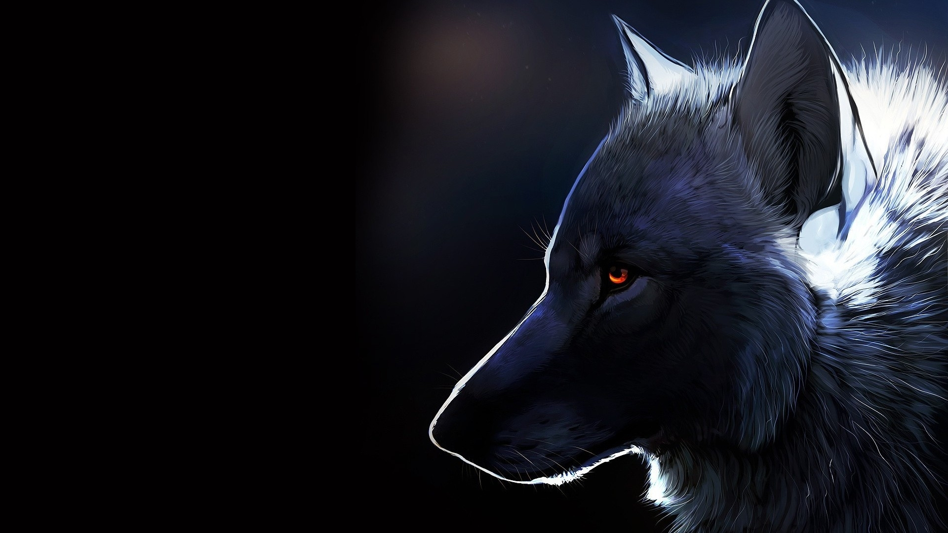 wolf hd pics
