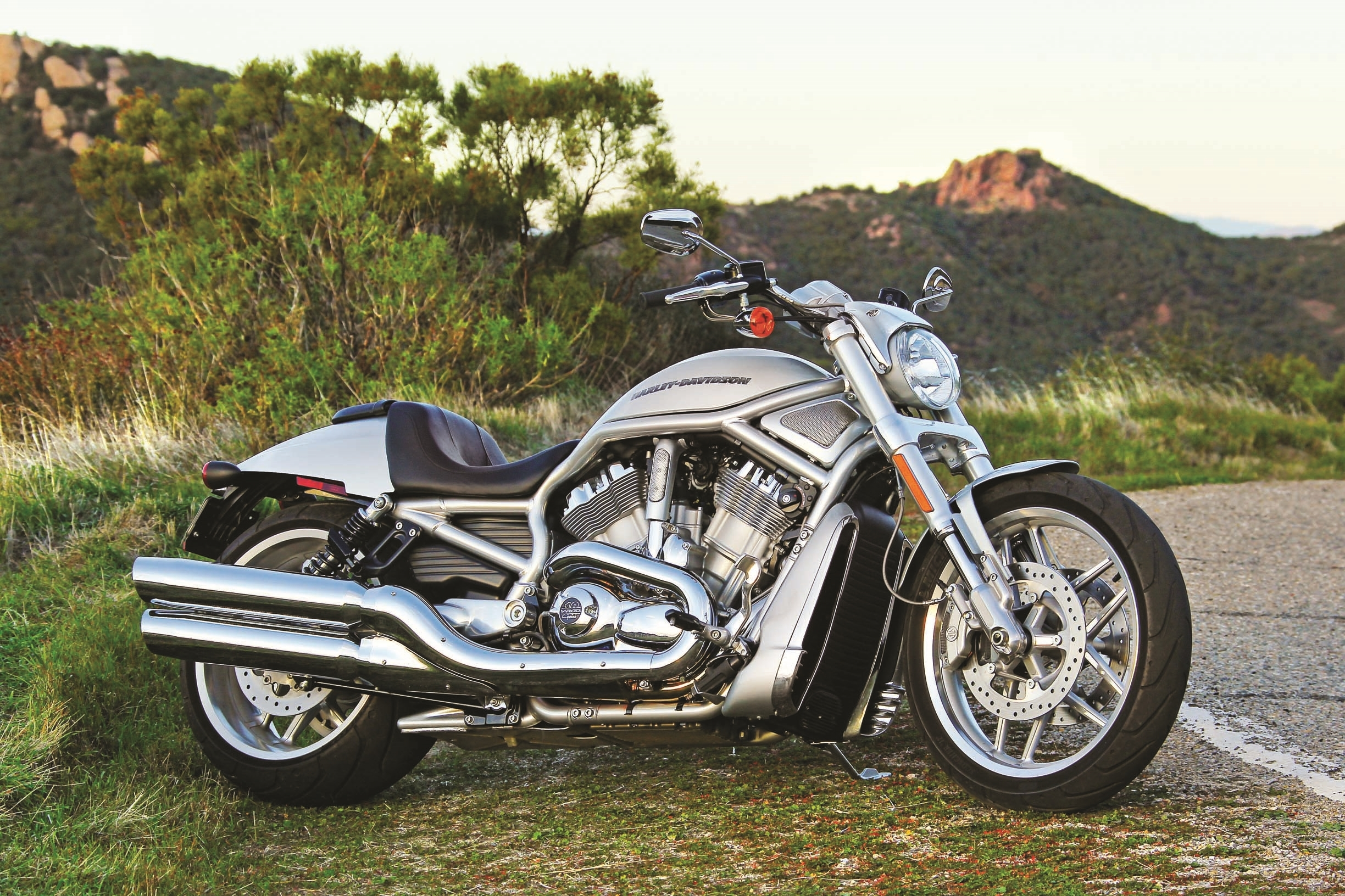 harley davidson v rod new wallpapers