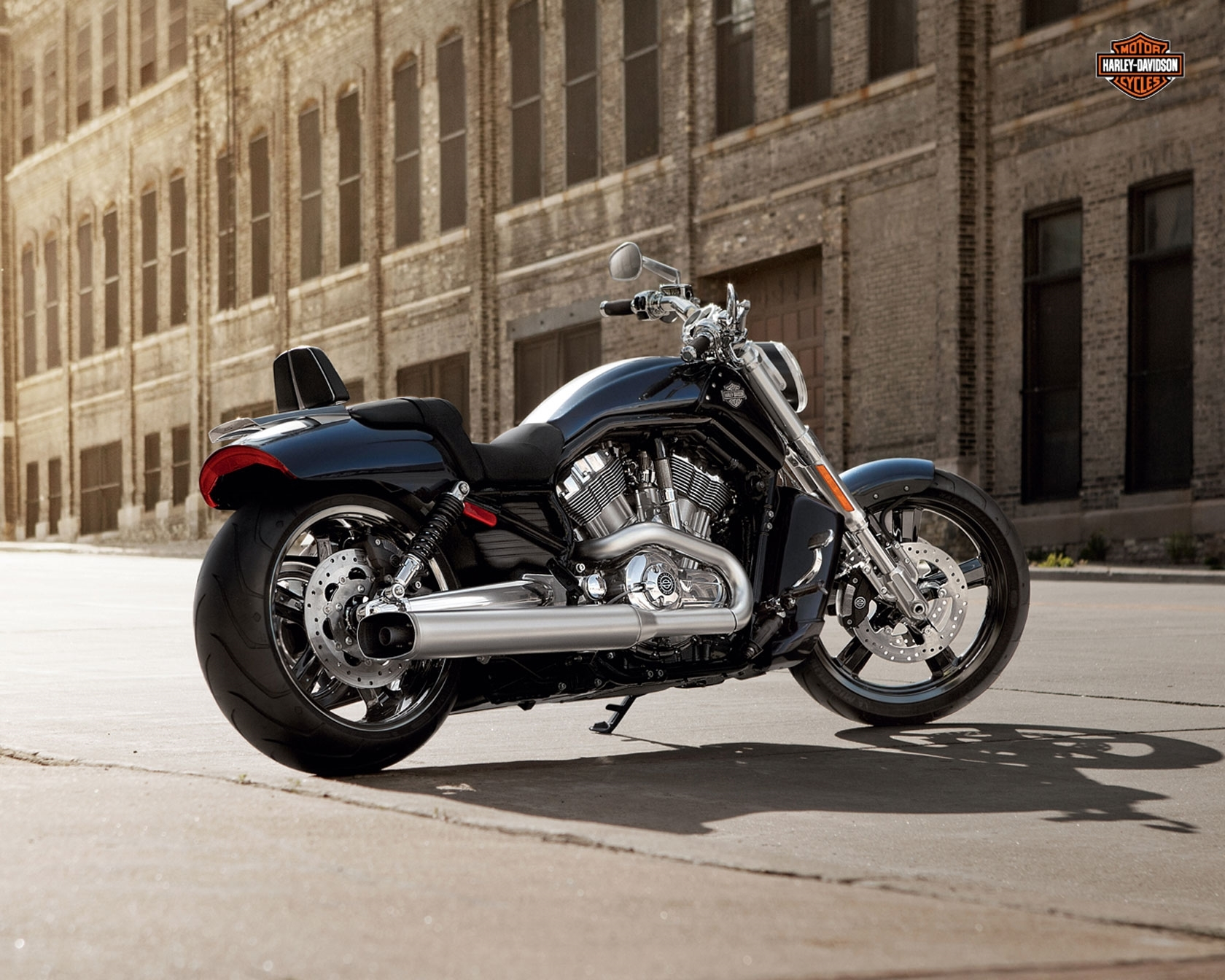 harley davidson v rod photos