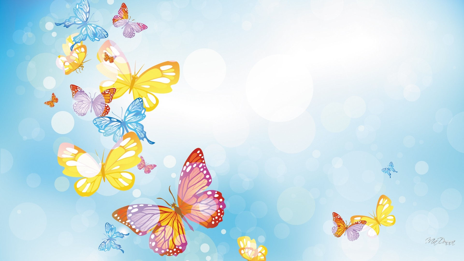 Butterflies Wallpapers Hd Download: Butterflies Wallpapers