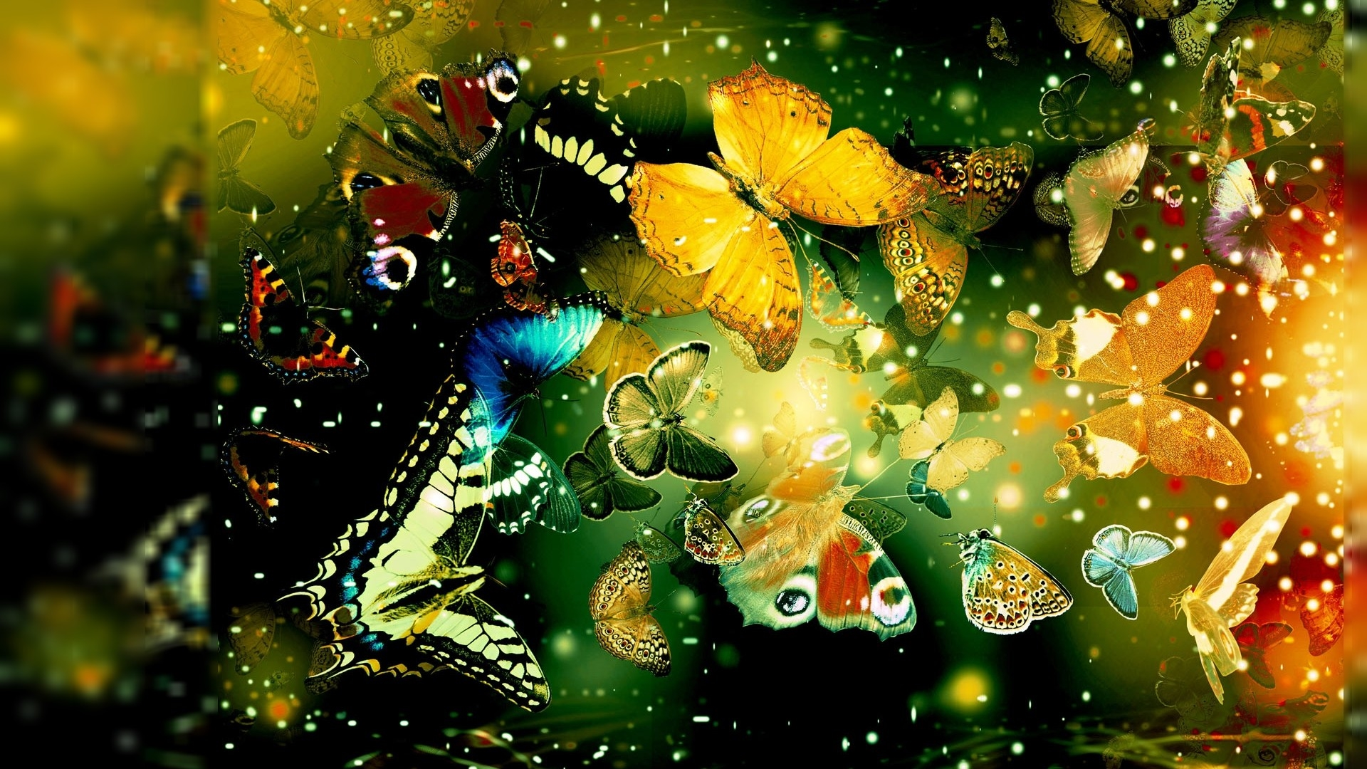 butterflies hd deskto