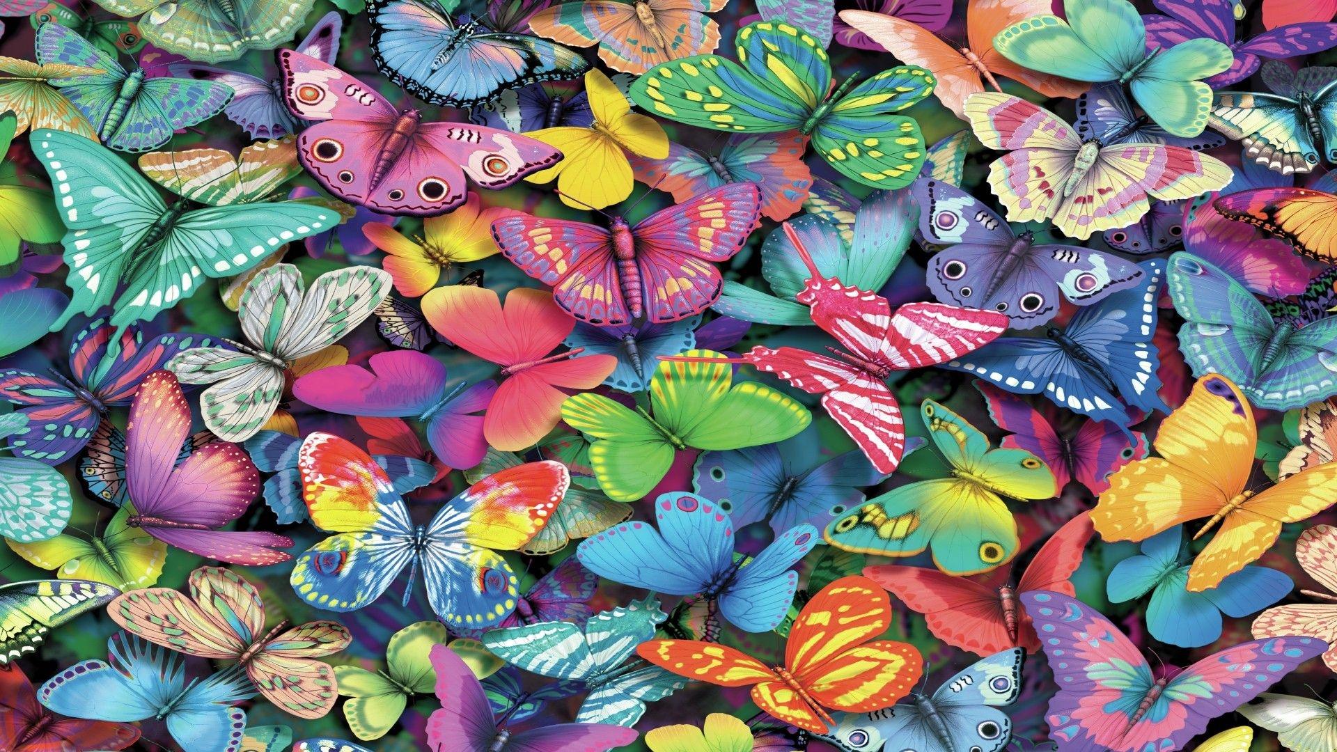 butterflies pics