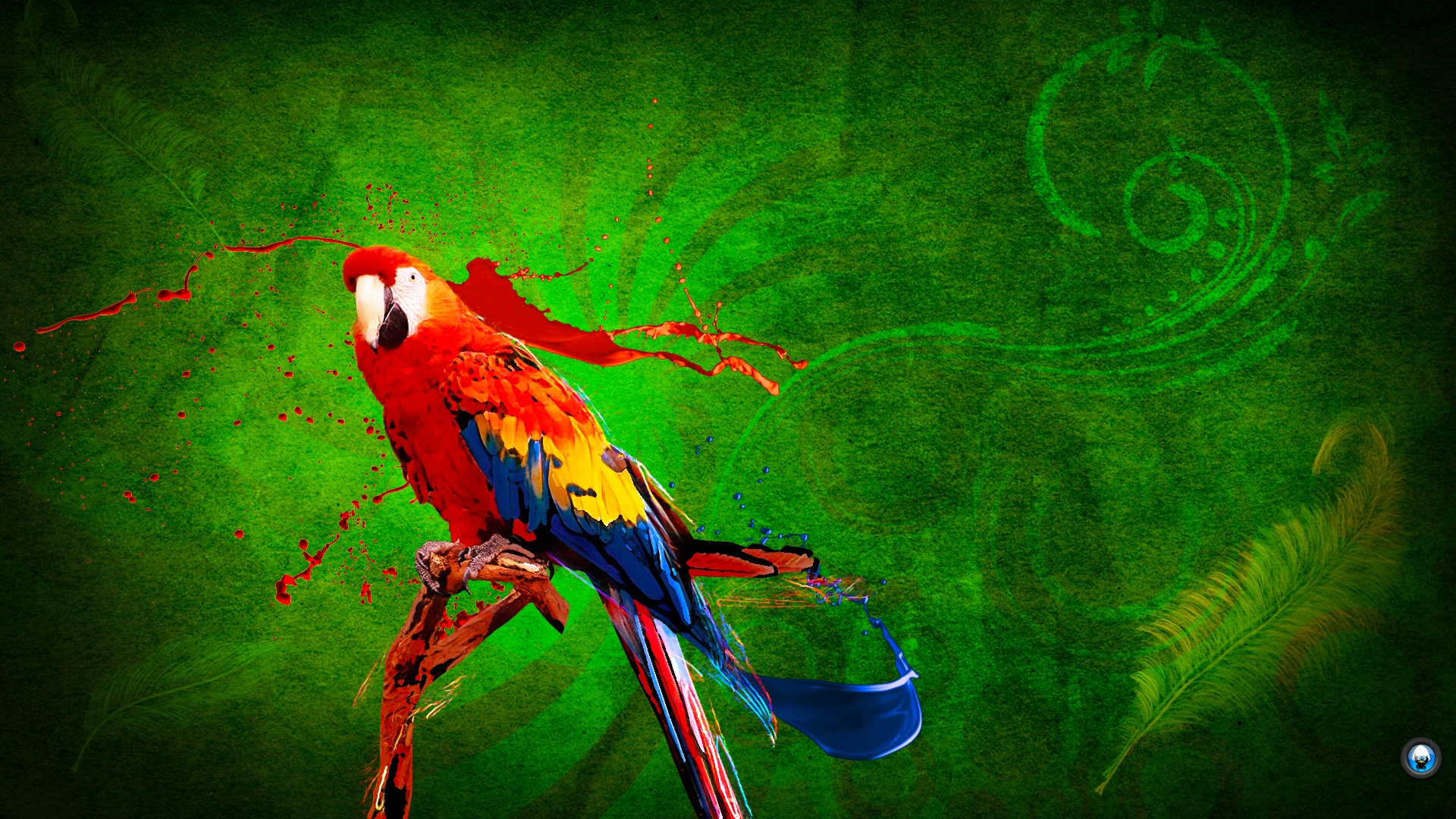 parrot deskto