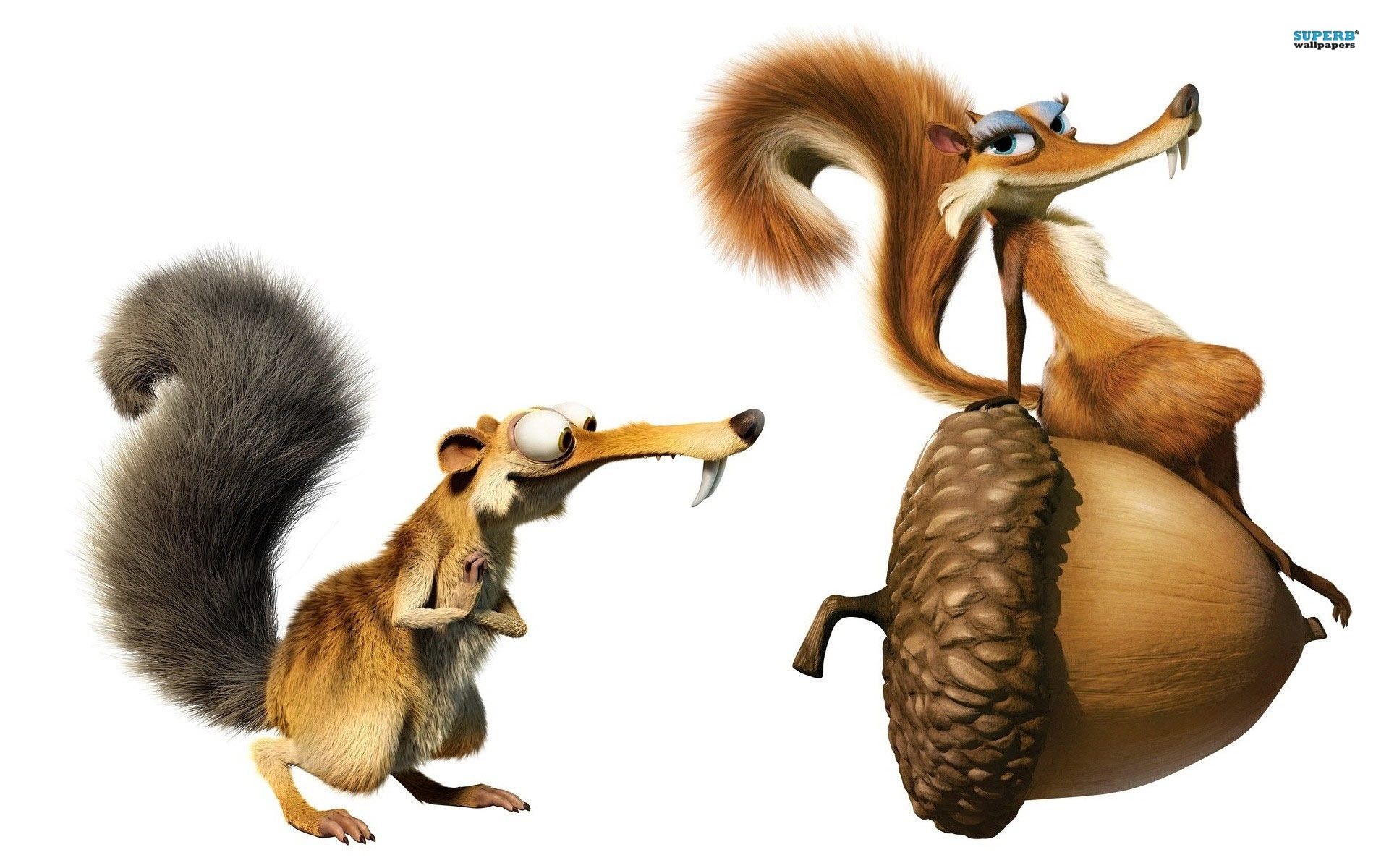 ice age 1 2 3 4 squirrels hd scrat wall paper