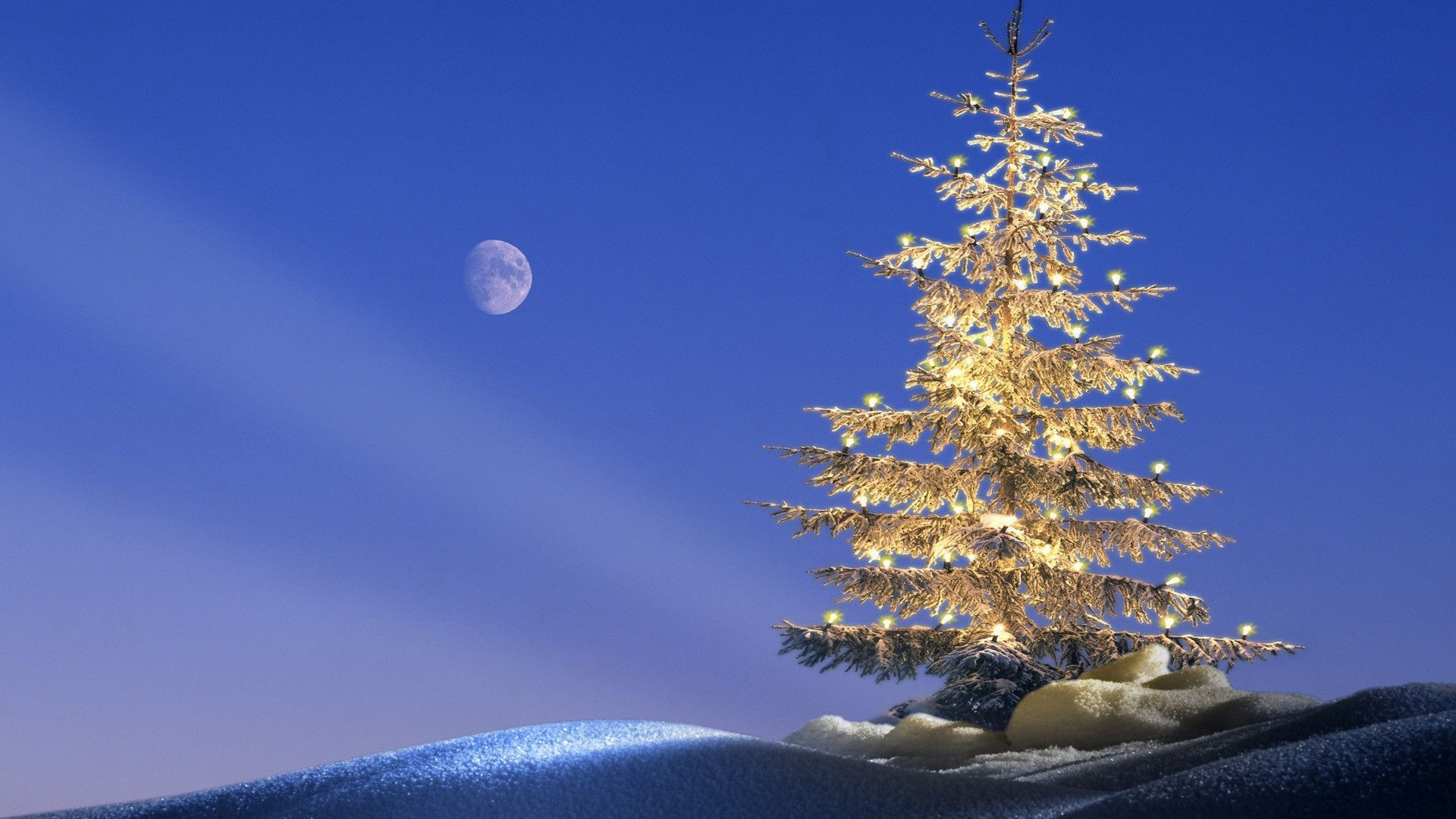 happy christmas golden tree lights snow moon hd wallpaper