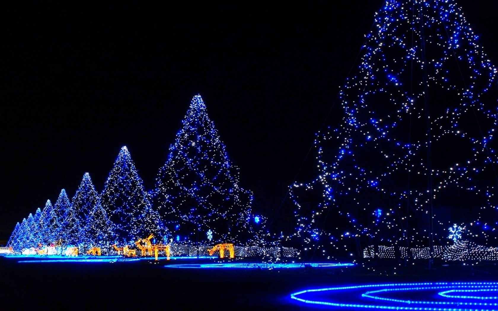 happy christmas tree blue lights rein deer hd wallpaper