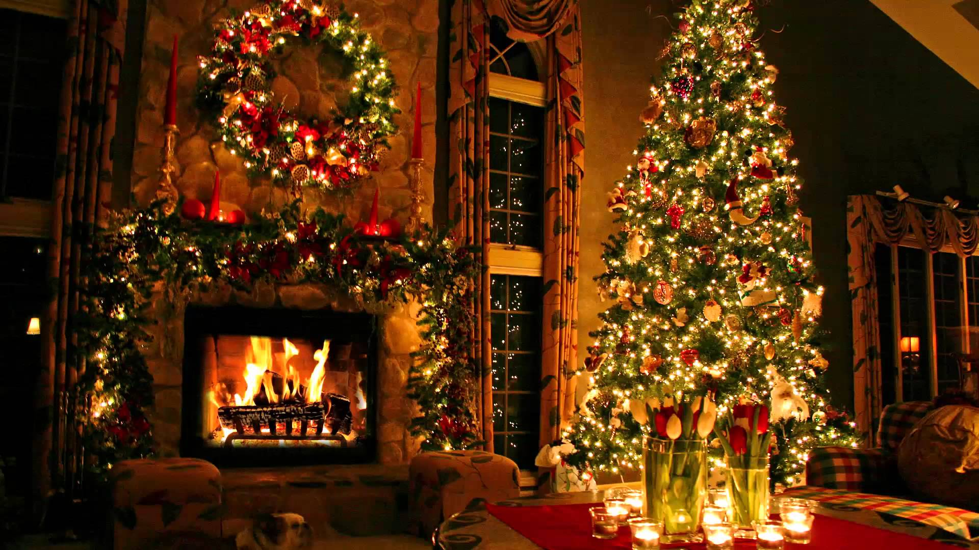 happy christmas tree lights decorated hd wallpaper
