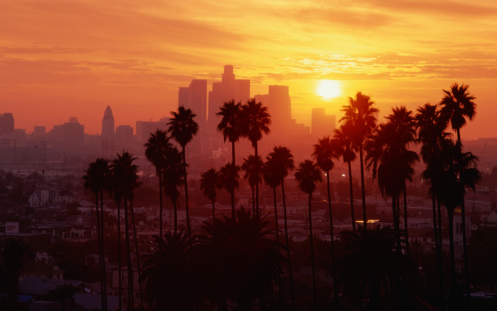 los angeles images