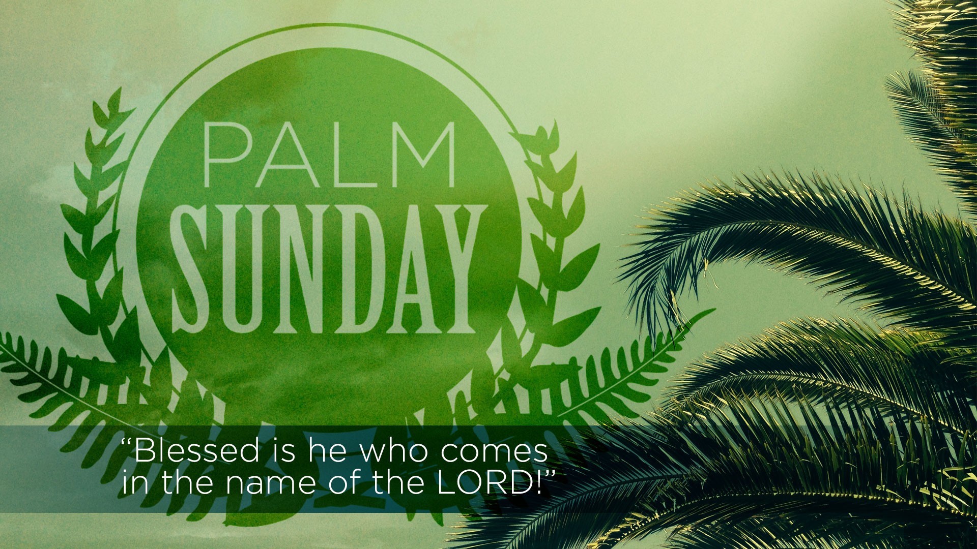 happy palm sunday blessed is he who comes in the name of the lord wallpaper