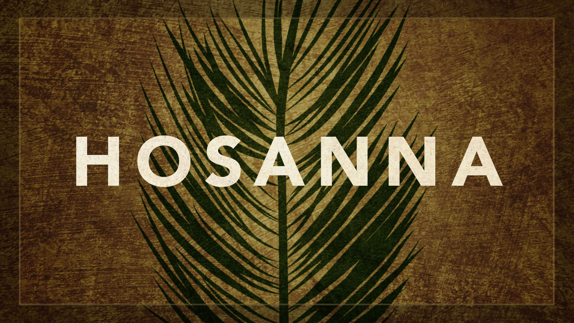happy palm sunday wishes hosanna hd image wallpaper