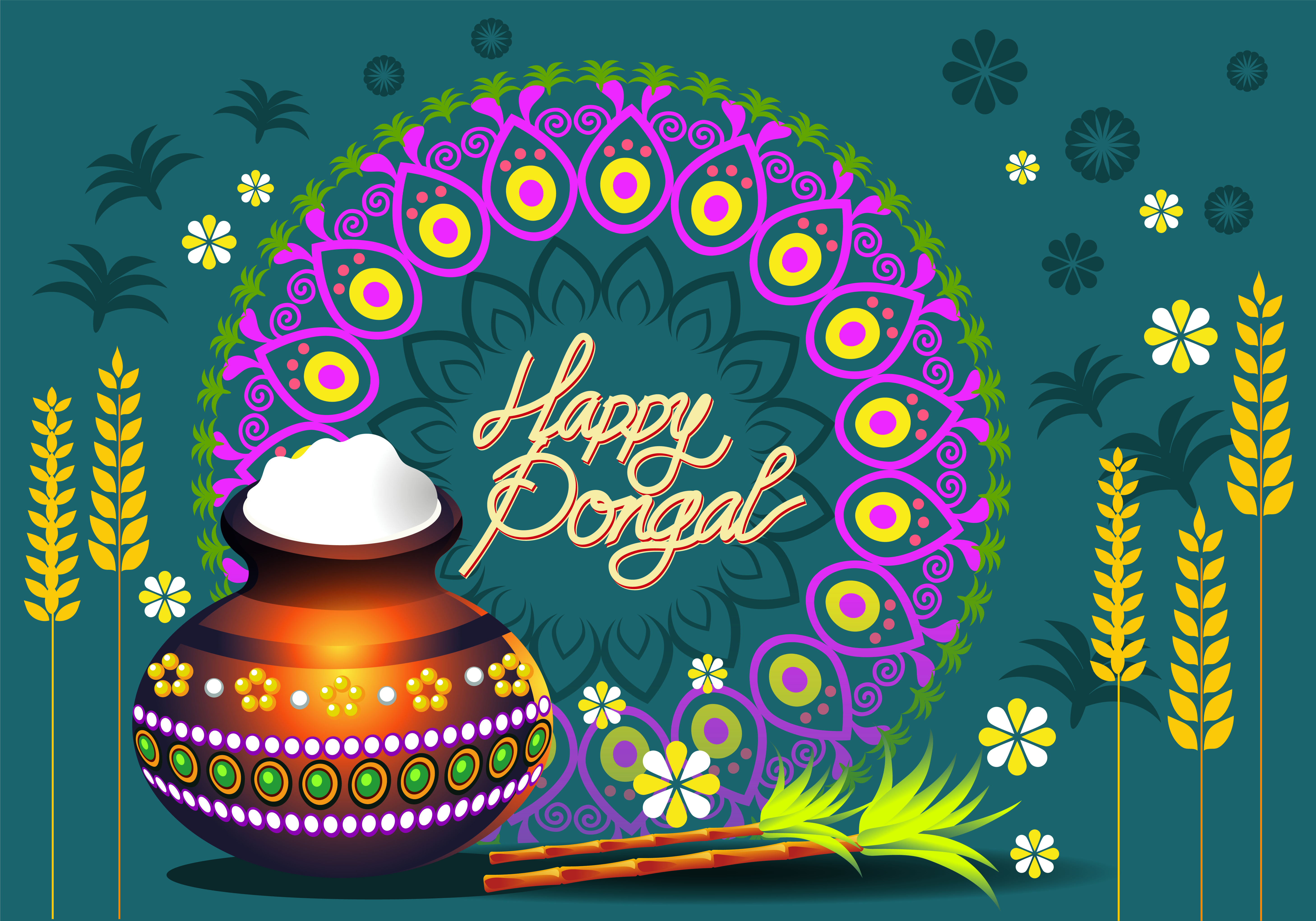 happy pongal festival wishes greetings hd background wallpaper