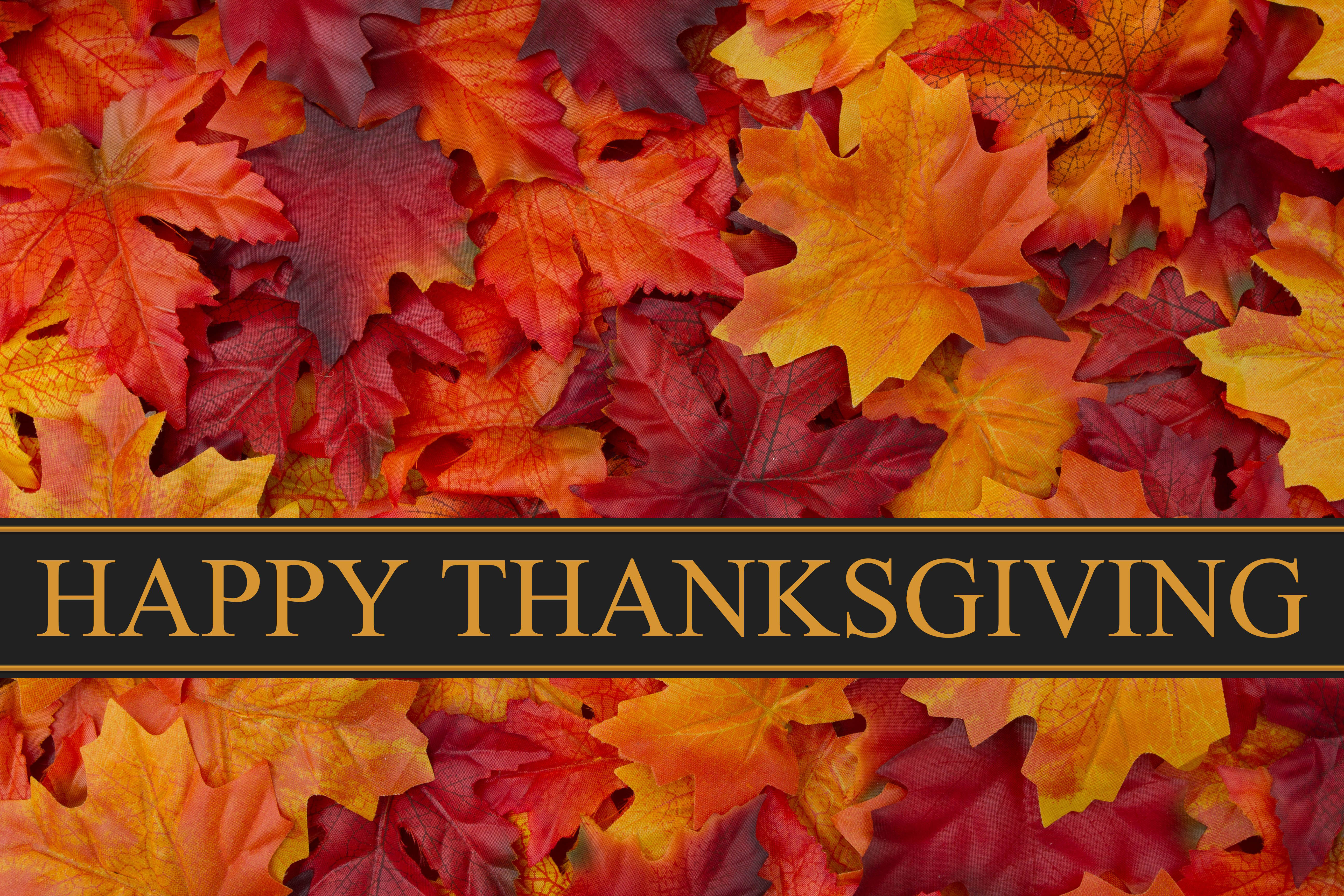 happy thanksgiving day leaves hd pc background wallpaper