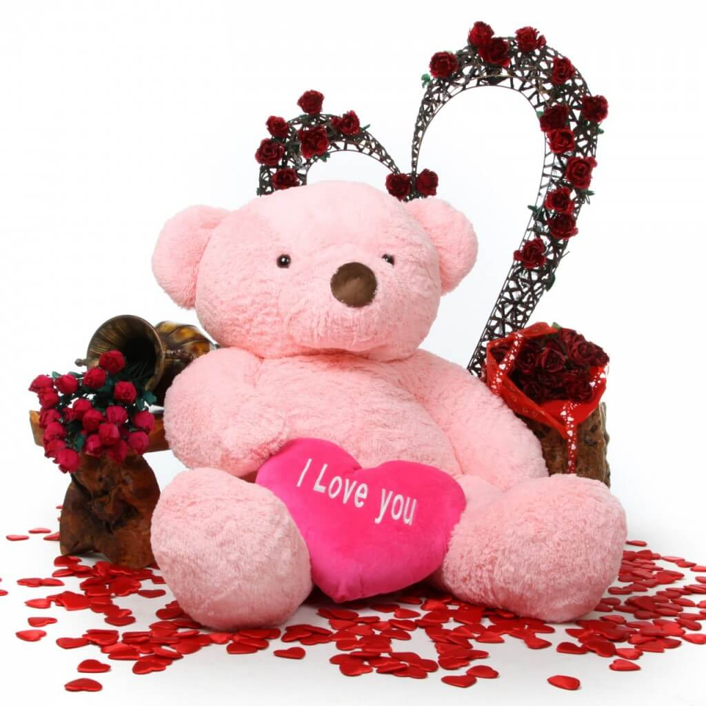 happy valentines day teddy bear i love you doll wishes hd wallpaper