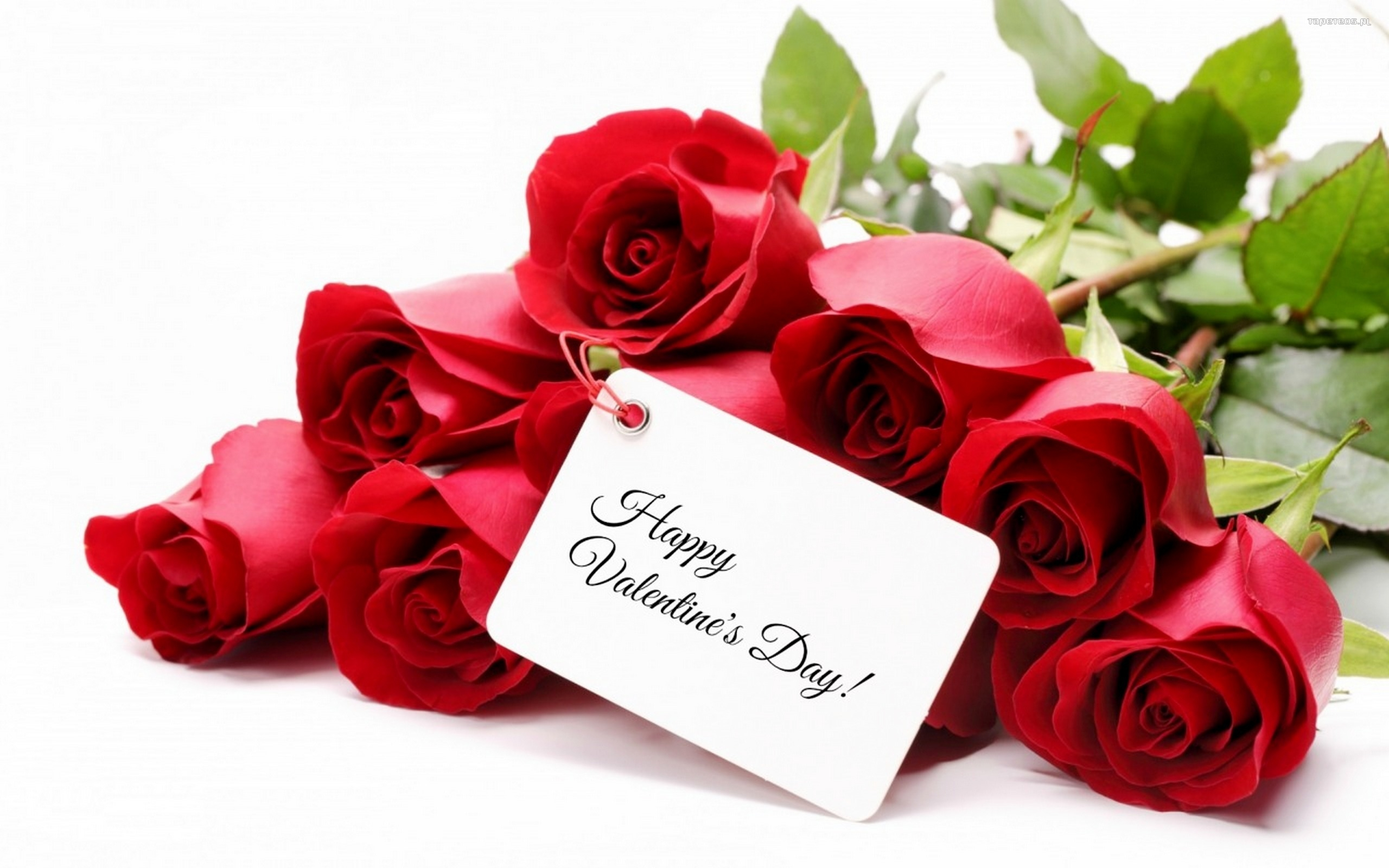 happy valentines day wishes tag love image picture hd wallpaper