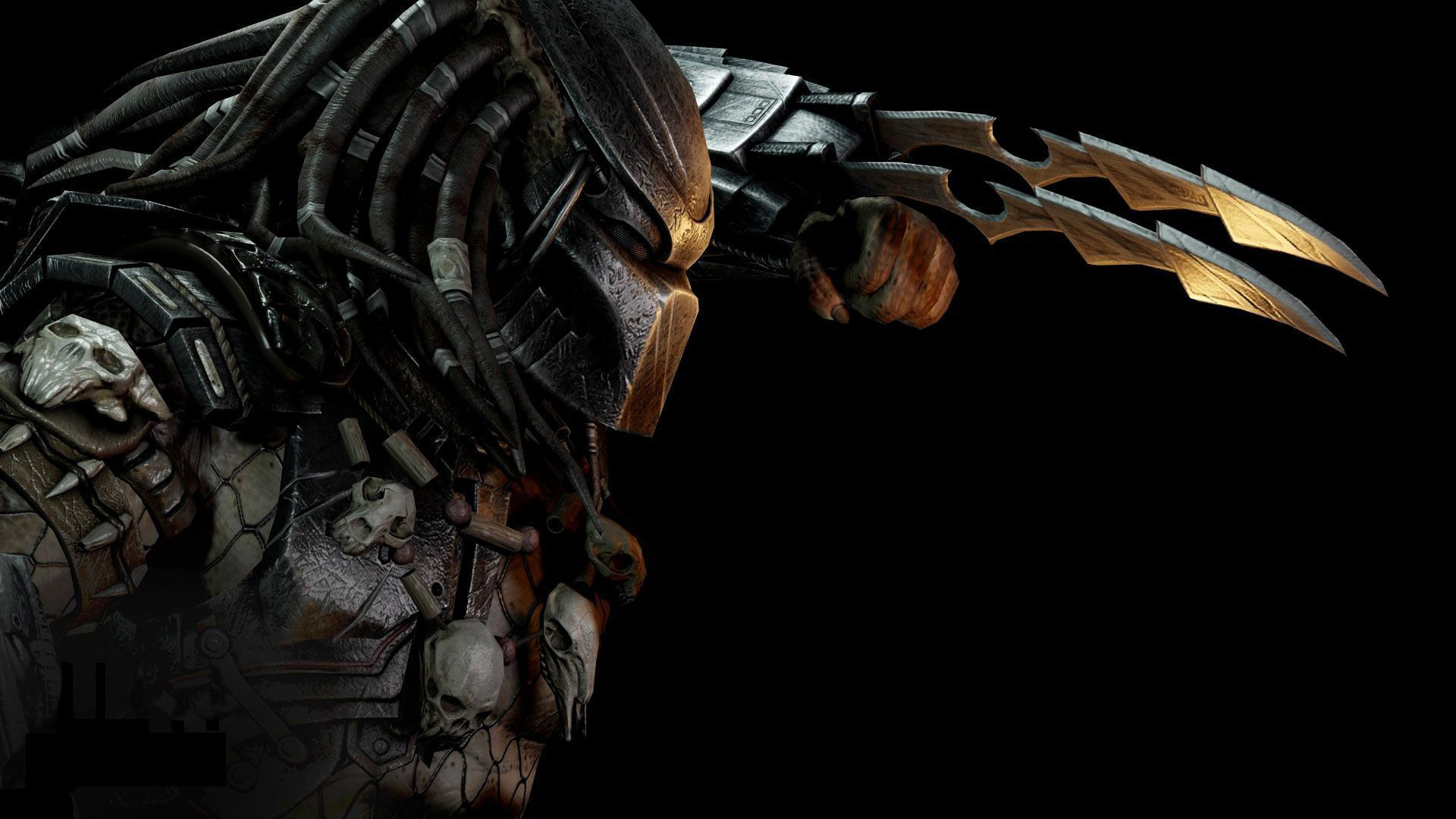 predator hd desktop background wallpaper image