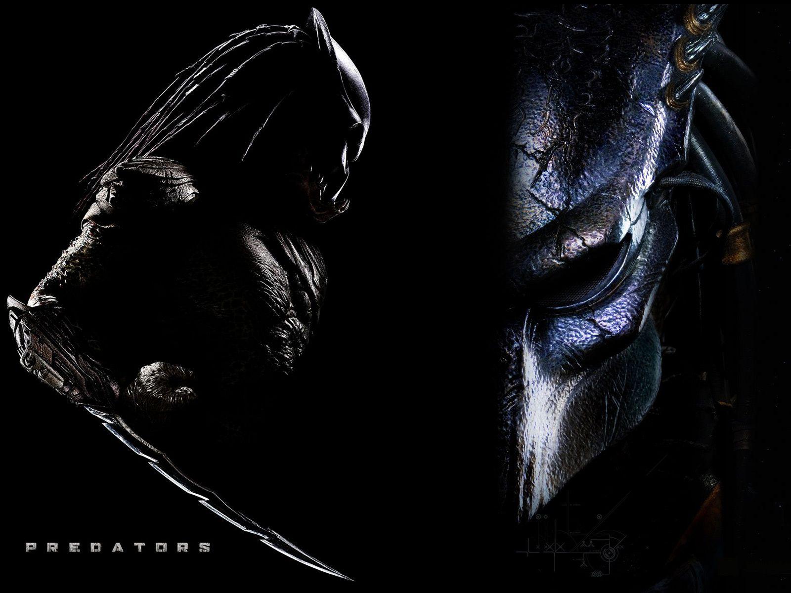 predator species hd image background wallpaper