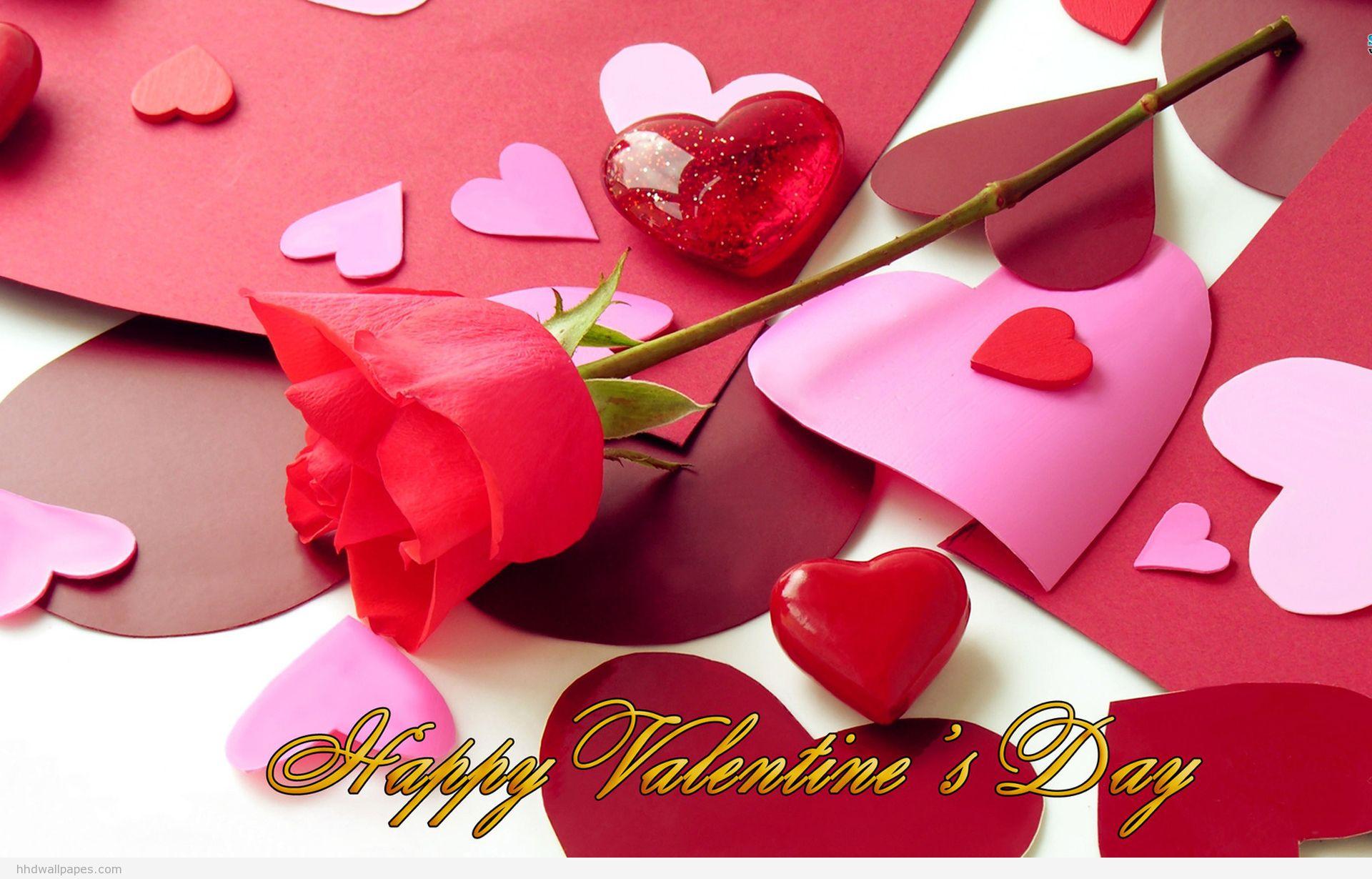 happy valentines day rose bud wallpaper hd