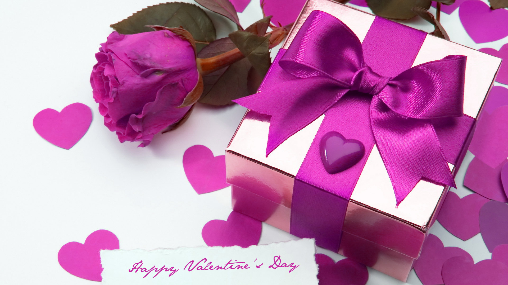 valentines day violet rose wallpaper free hd desktop