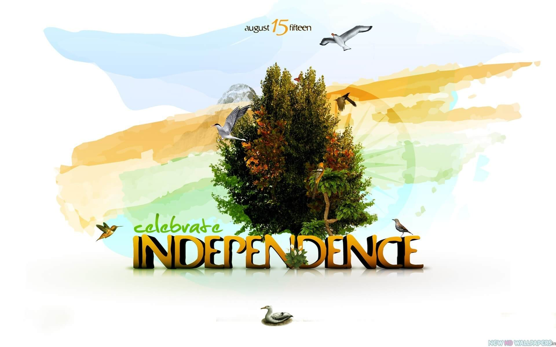 celebrate india independence day august 15th modern wallpaper