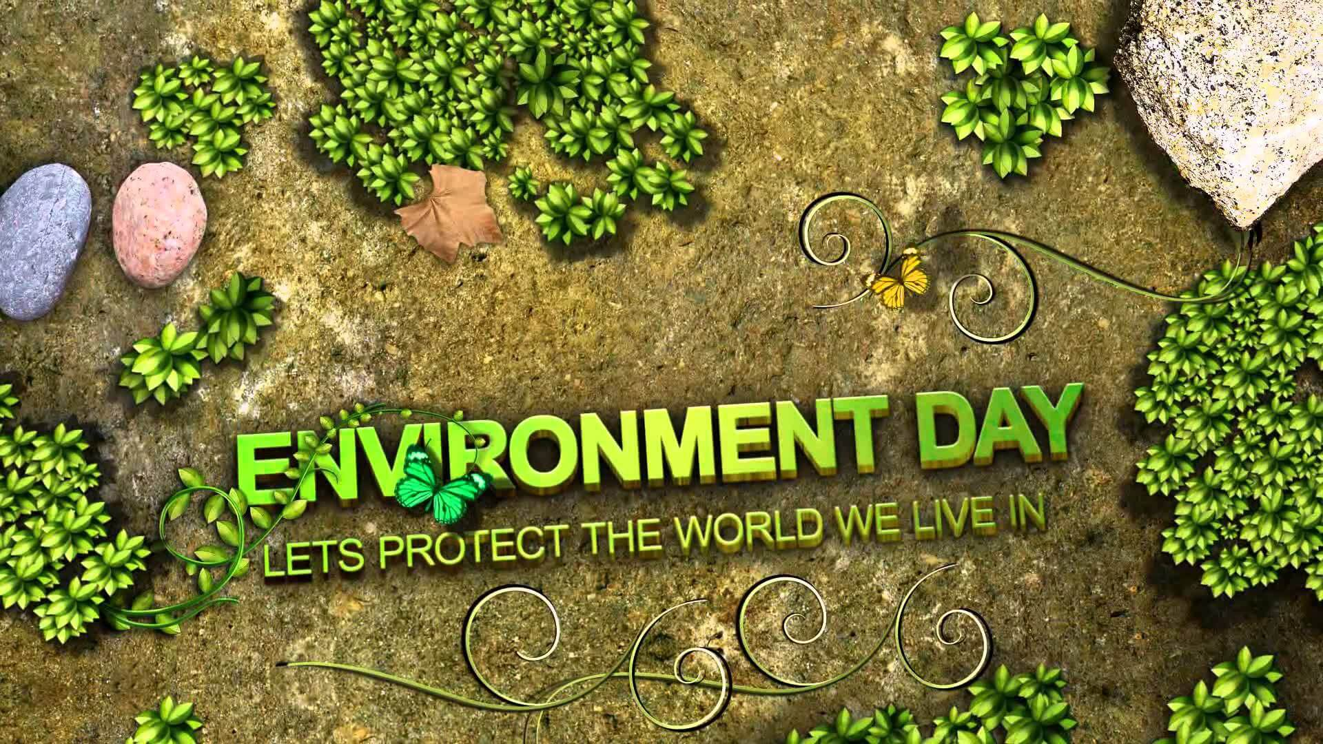 environment day protect the world wallpaper