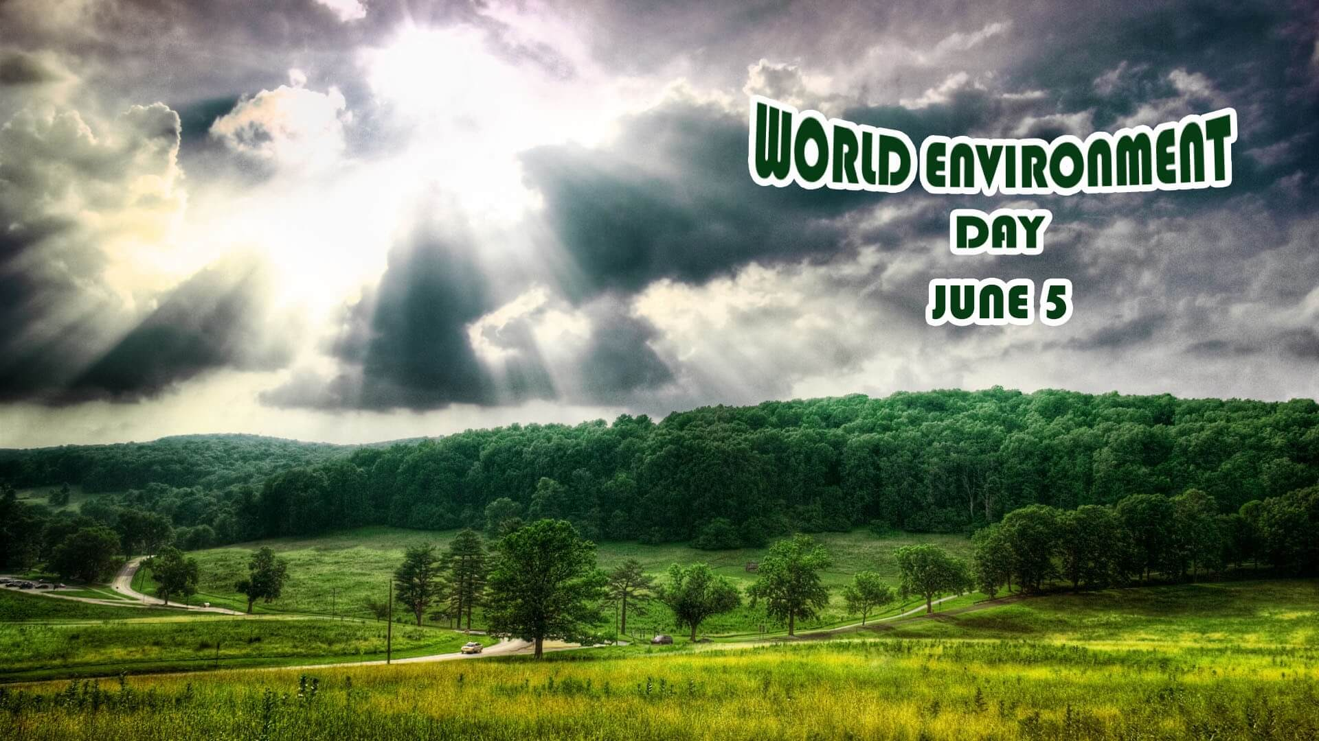 environment day save trees forest nature wallpaper