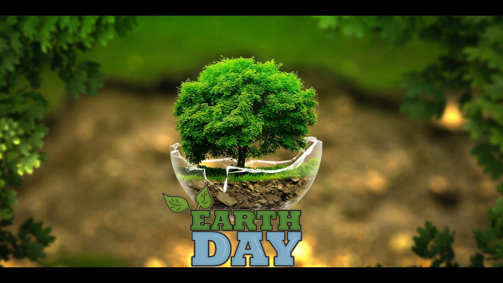 happy earth day grow green trees 3d hd wallpaper