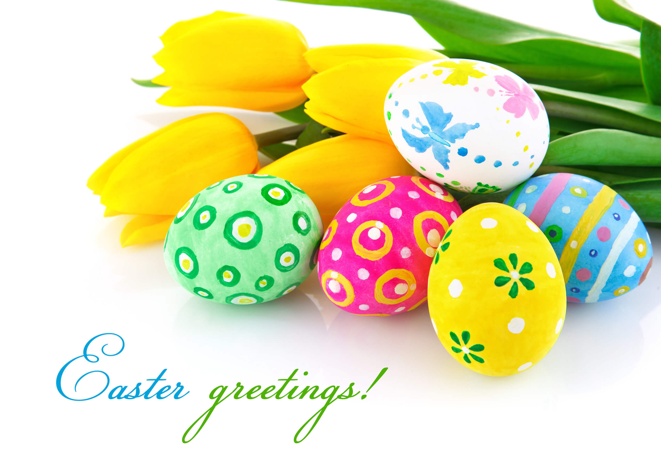 happy easter greetings hd wallpaper