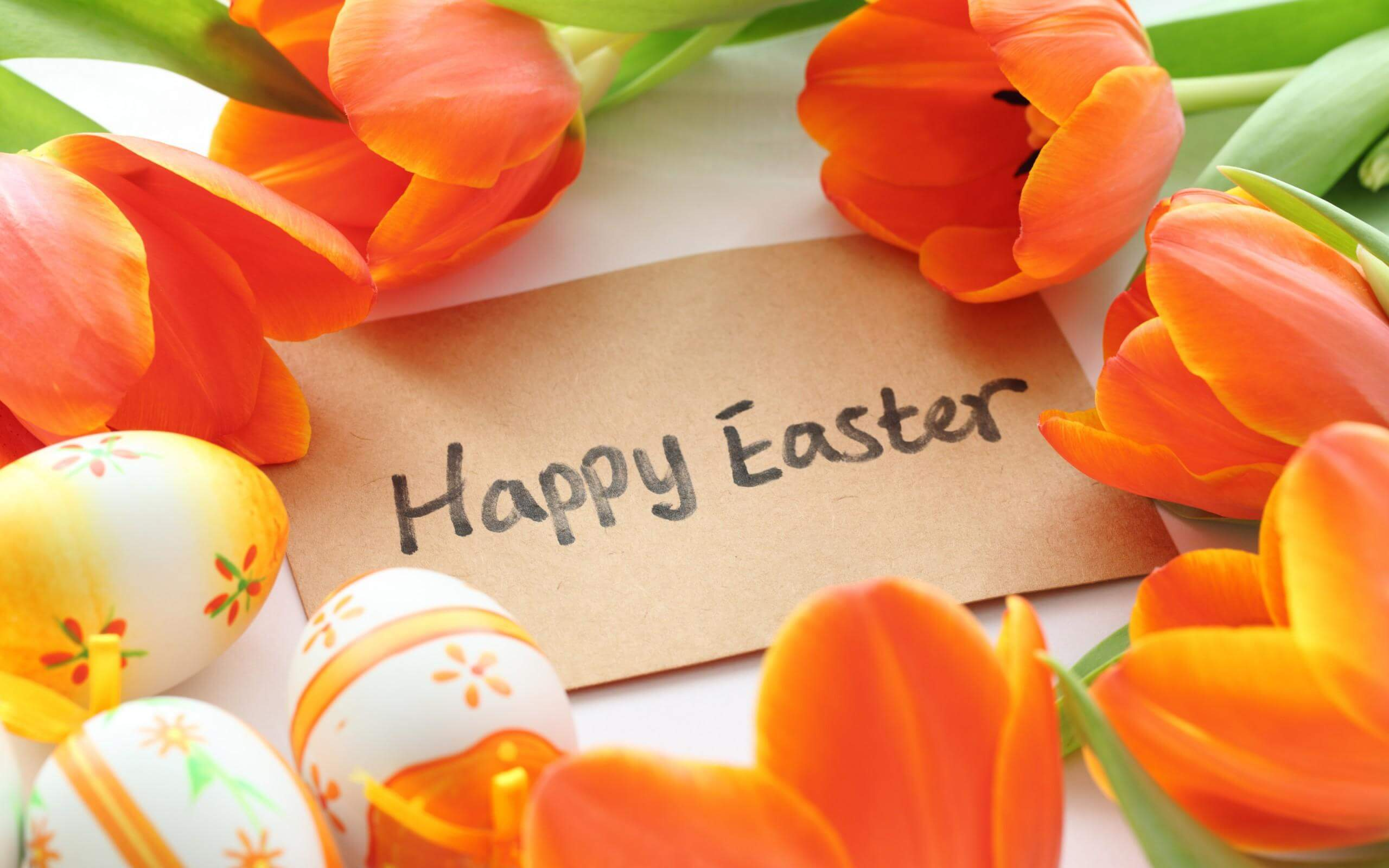 happy easter greetings wallpaper background