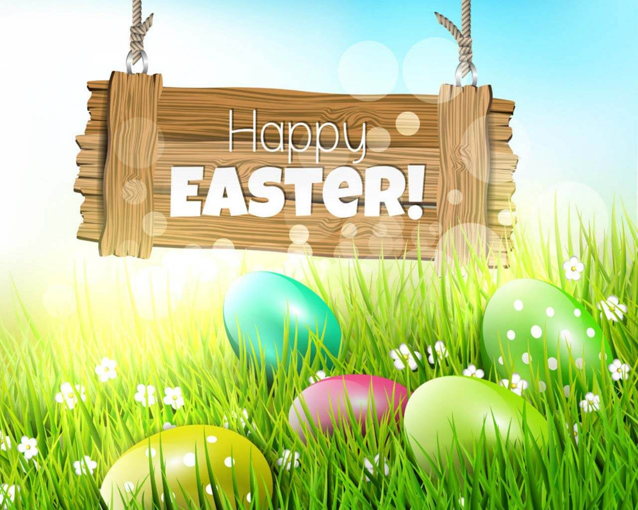 happy easter greetings wishes eggs background hd wallpaper