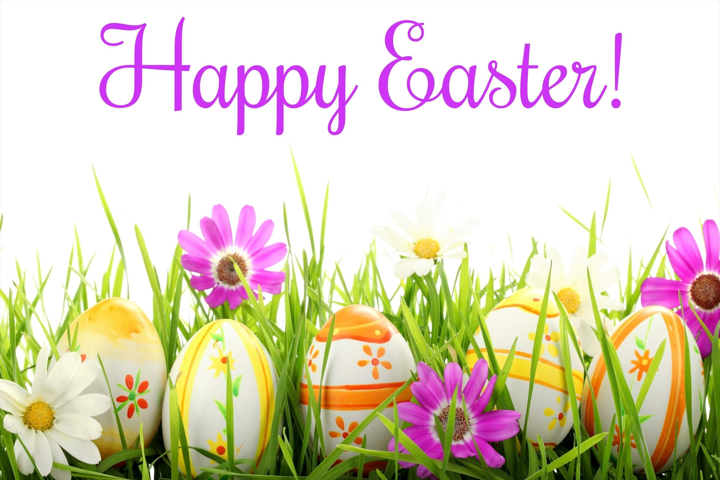 happy easter wallpaper background
