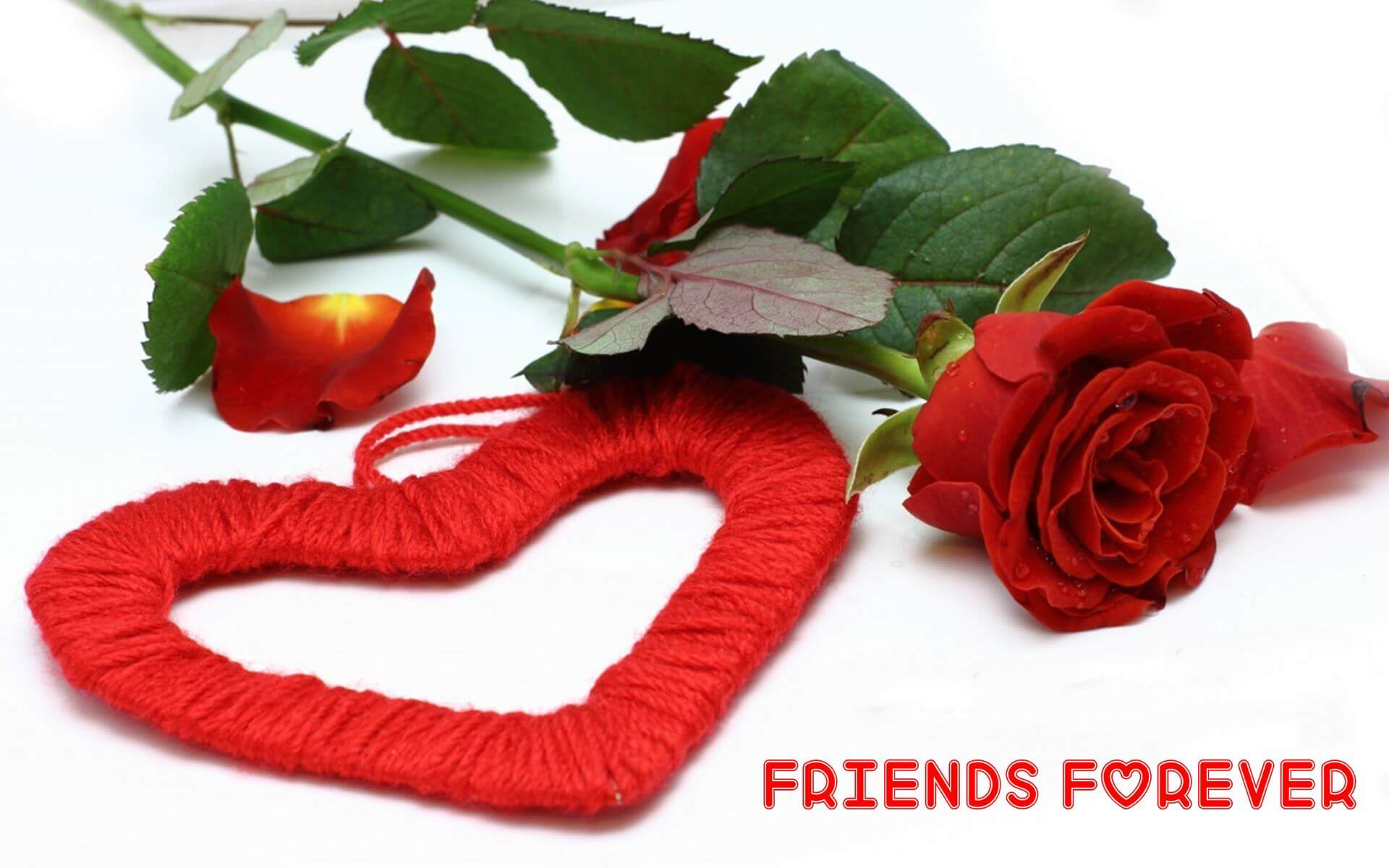 Happy friendship day love and rose hd wallpaper altavistaventures Image collections