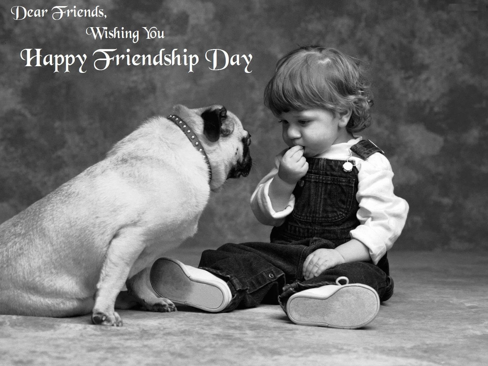 happy friendship day pug dog and boy hd wallpaper