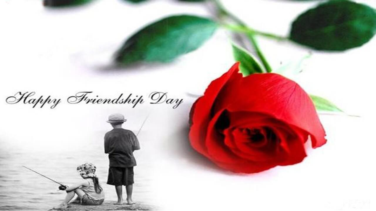 happy friendship day red rose hd wallpaper