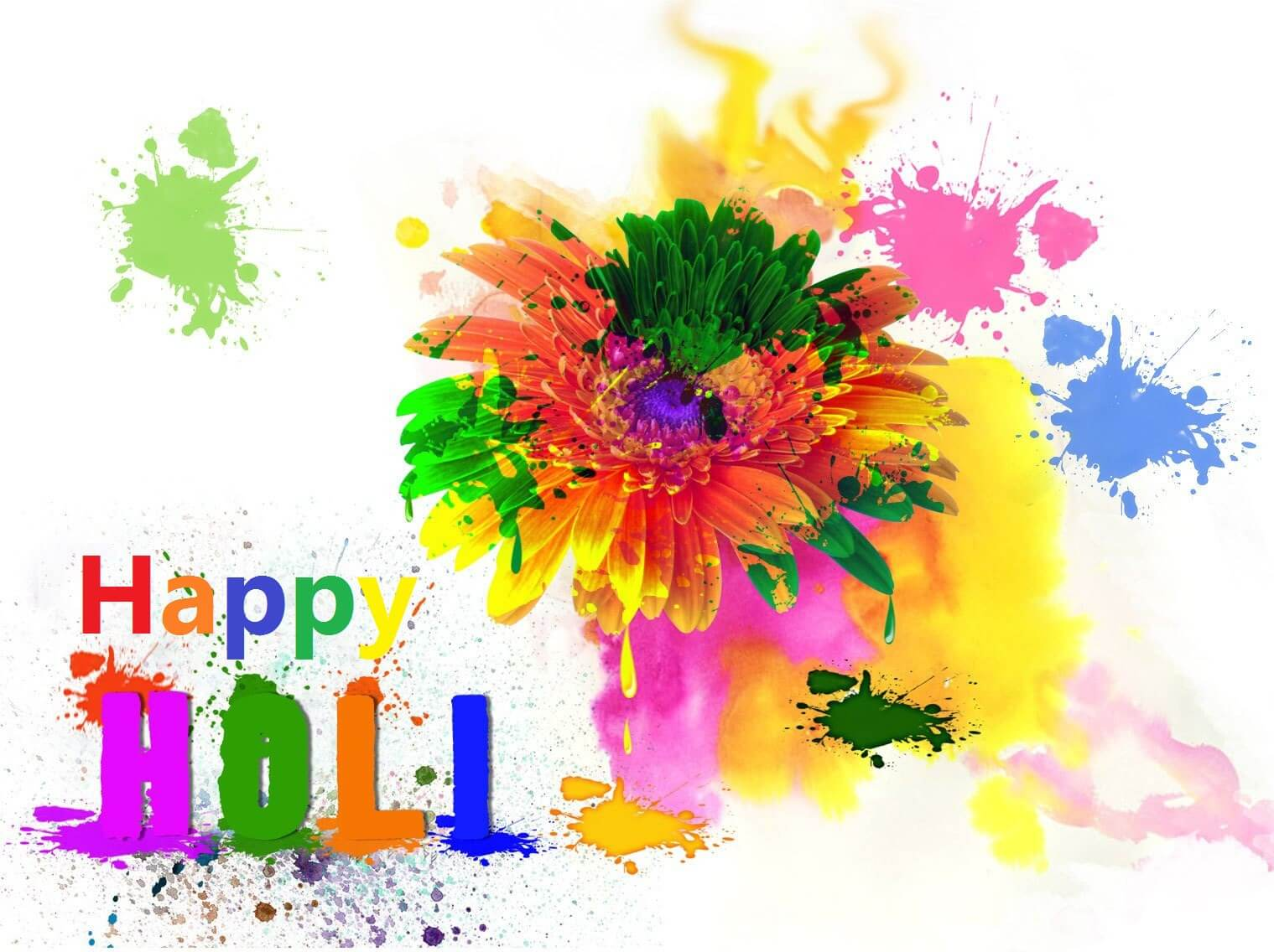 happy holi hd wallpaper desktop