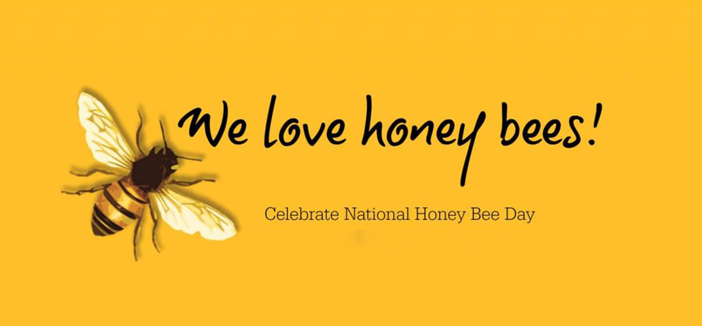 happy honey bee day image pc wallpaper