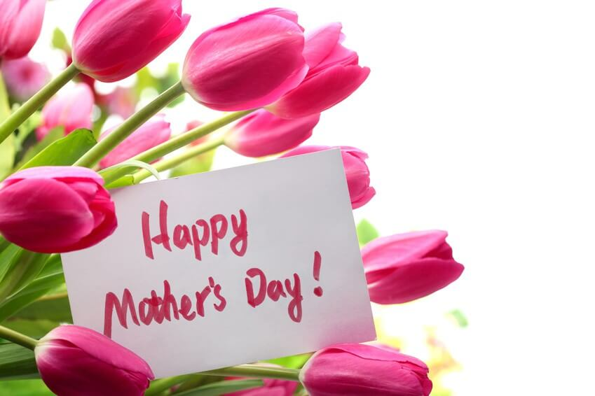 mothers day wallpapers free download, Natural flower