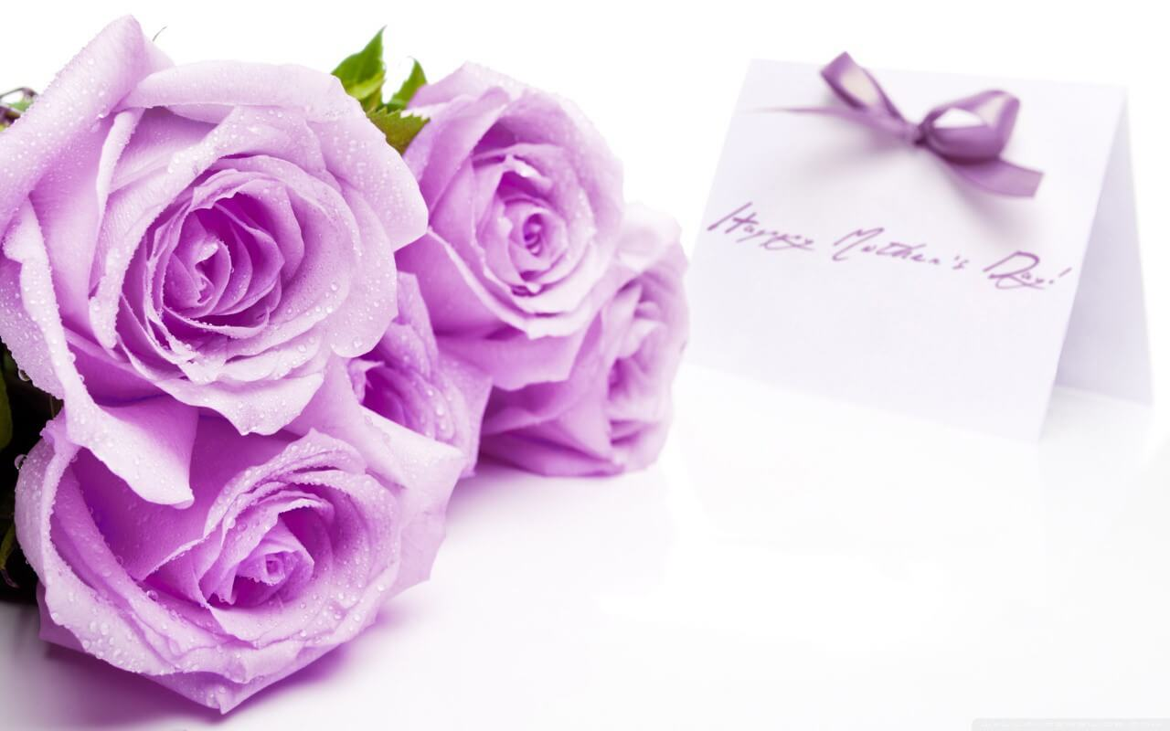 happy mothers day purple rose wishes greeting card wallpaper