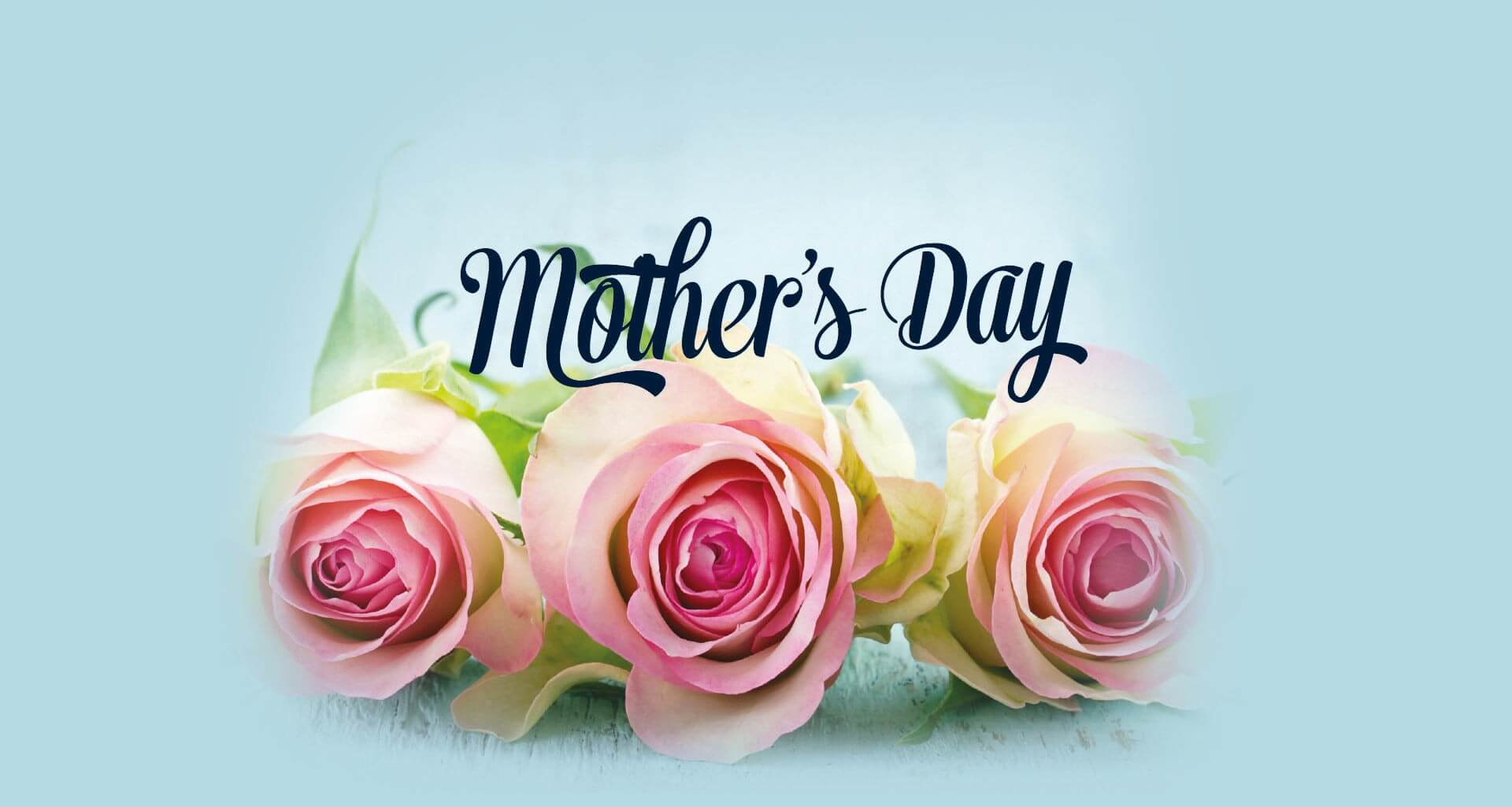 Happy Mothers Day Wishes Pink Roses Desktop Hd Wallpaper