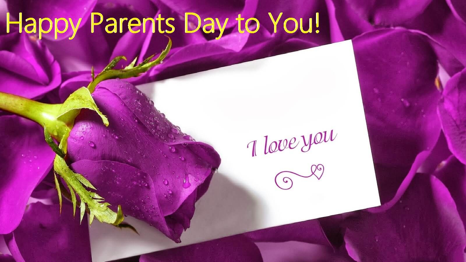 happy parents day wishes hd greetings rose