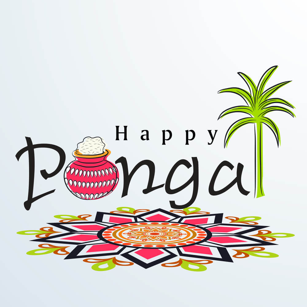 happy pongal background hd wallpaper