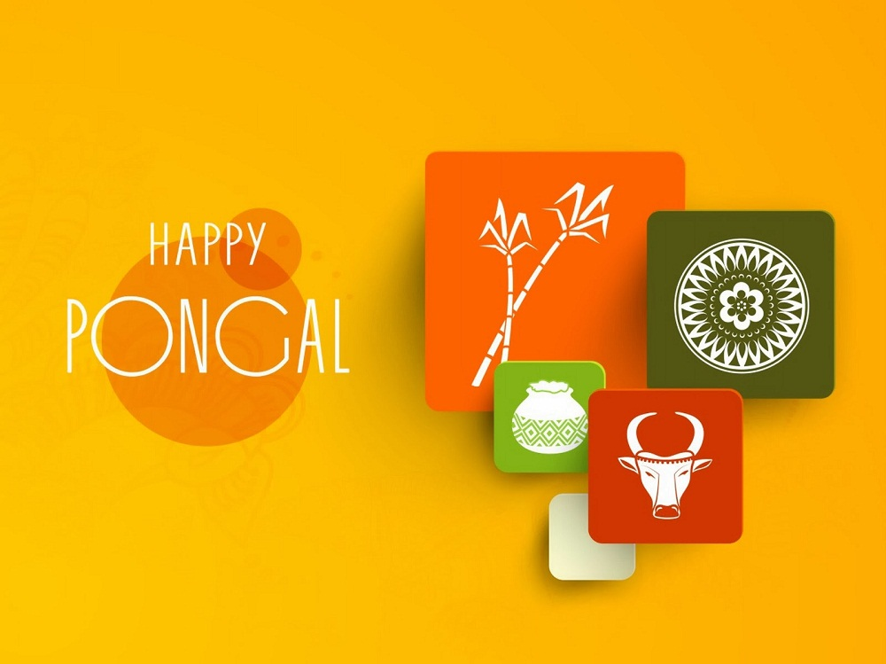 happy pongal desktop pc hd wallpaper