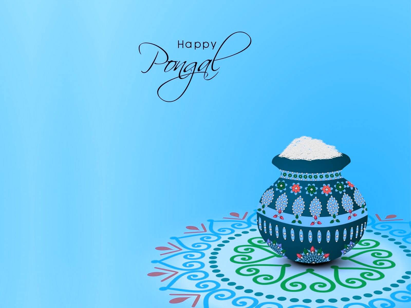 happy pongal festival background hd wallpaper