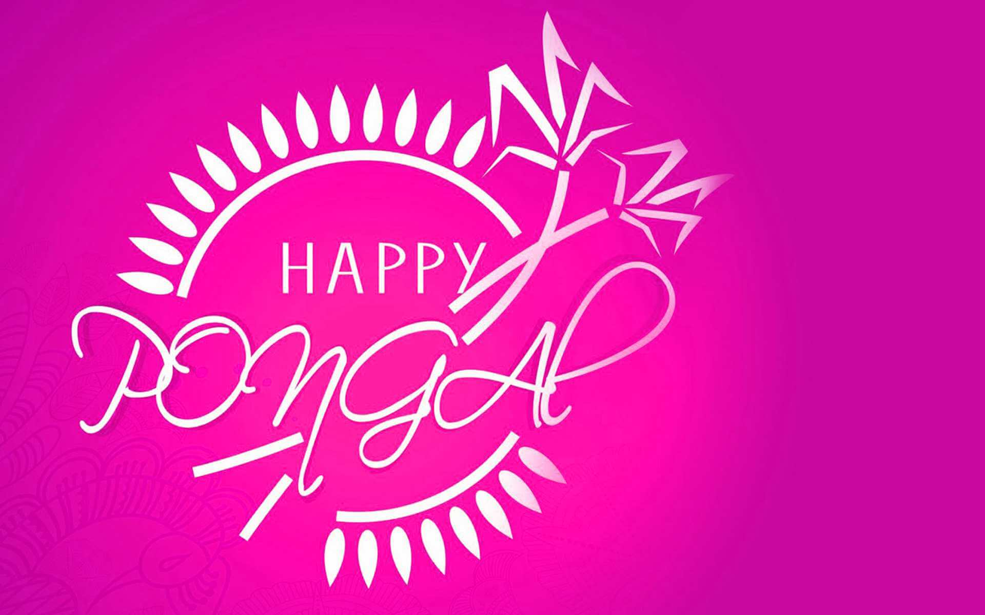 happy pongal pc hd wallpaper