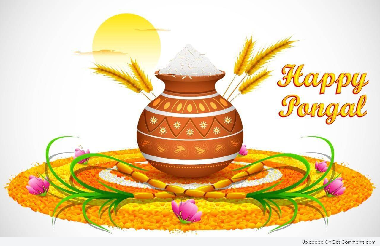 happy pongal wishes latest hd wallpaper