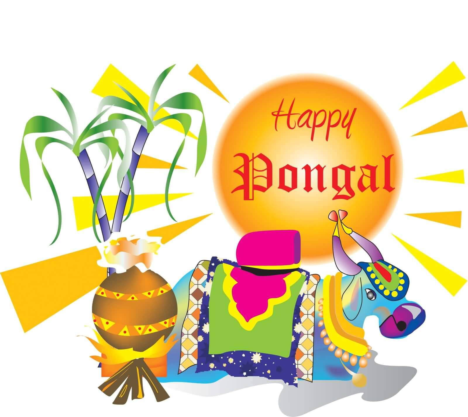 happy pongal wishes pc hd wallpaper