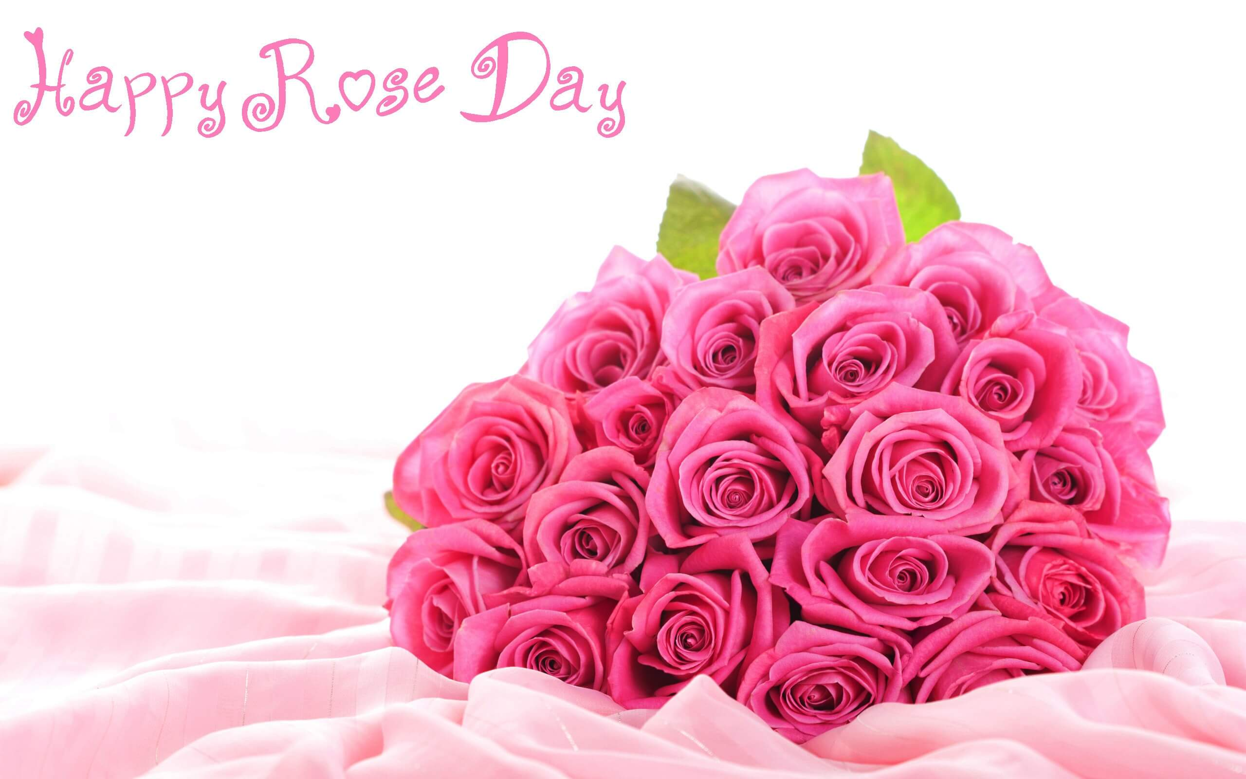 happy rose day pink flower wishes greetings image picture hd wallpaper