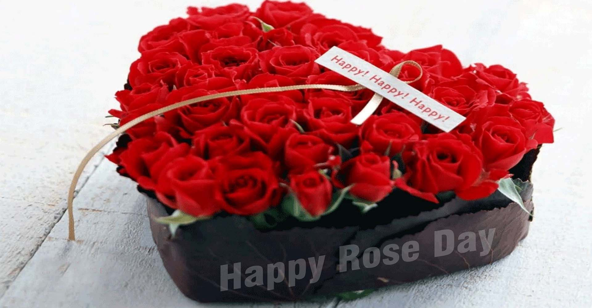happy rose day red flowers heart gift february 7th background hd wallpaper